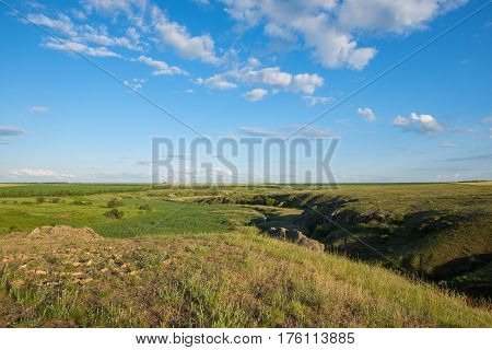 Spring Landscape - A Prairie Covered With Green Fresh Grass