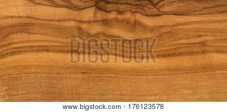 Olive wood texture close up as background