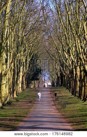 Male jogger running through park in autumn