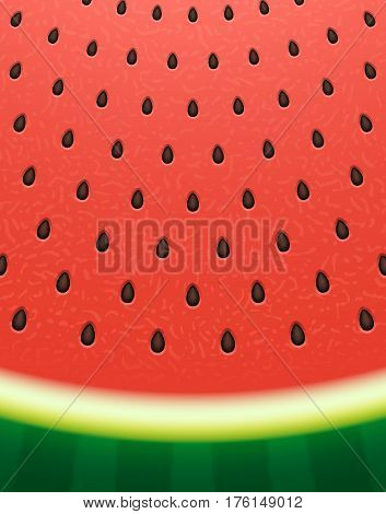 Watermelon texture background with seeds. Vector illustration Eps 10