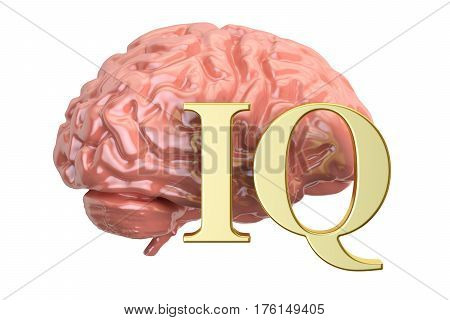 Human brain and IQ word 3D rendering