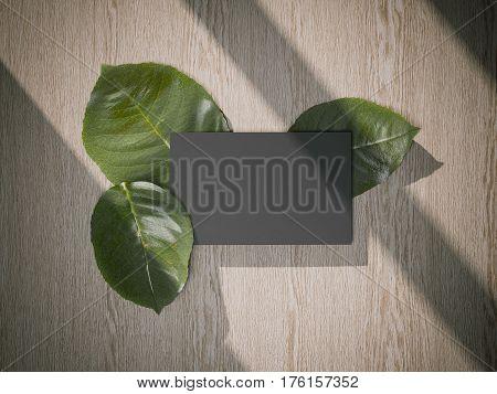 Three fresh tree leafs and black busines card. 3d rendering