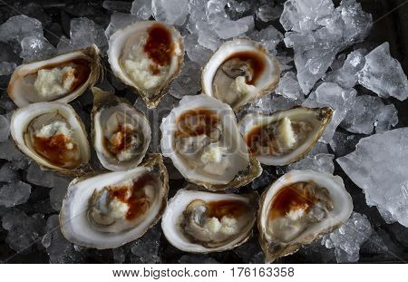 Fresh Oysters on the half shell with horseradish and seafood sauce