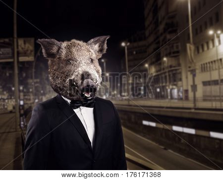 Portrait of groom in suit with wild boar head