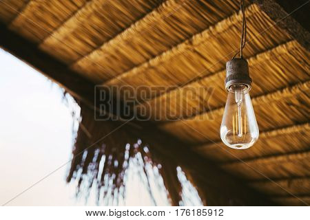 Lamps incandescent on the background of bamboo leaves of the roof of the house. Lamp of Edison. The concept of the Earth Day.