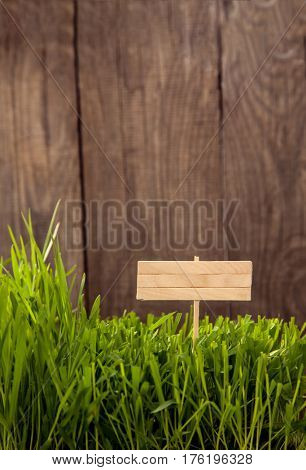 Signboard on Grass background of wood planks, Fresh green lawn near rustic grunge fence