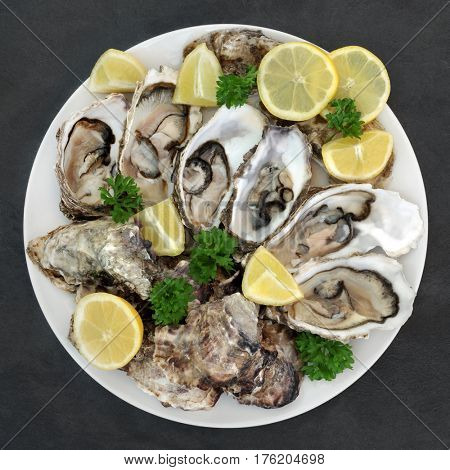 Oyster shellfish on a round porcelain plate with lemon fruit and parsley herb on slate background.