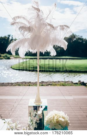 White plume in tall thin vase against the background of river and park