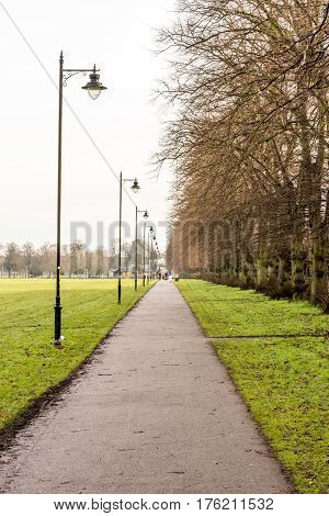 Straight avenue in park with lamp posts, path way, England.