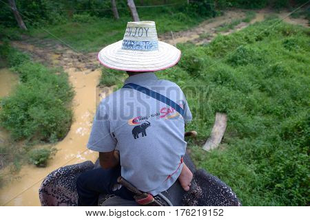 Ao Nang Thailand - November 16 2014: Elephant ride: mahout sits astride and manages beast