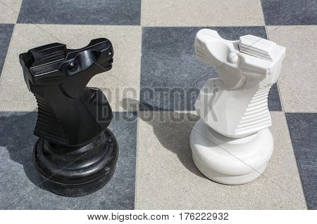 Black and white knights on the street chessboard