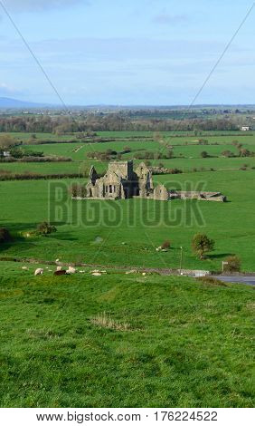 Ruins of Hore Abbey surrounded by thick green grass.