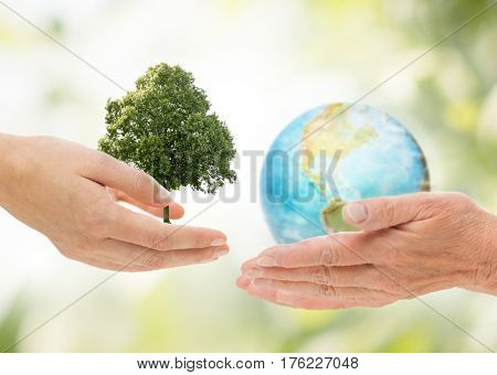 earth day, nature, conservation, environment and ecology concept - young and senior woman hands holding oak tree and planet over green natural background