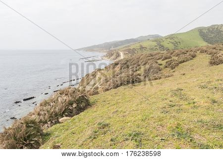 Strait Natural Park in Cadiz Spain Europe