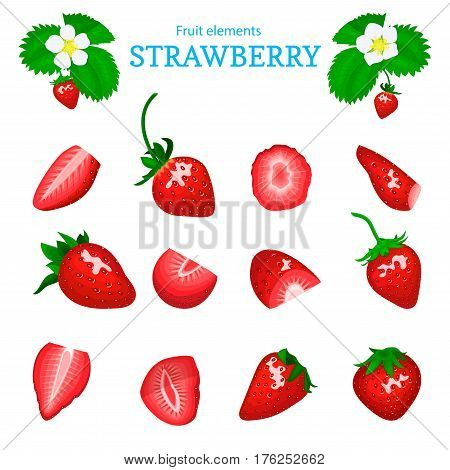 Vector set of a fresh red strawberry. Berry cut, piece of half slice leaves, flower. Collection of ripe strawberry fruits for packaging design of juice, breakfast, jam label, ice cream, smoothies.