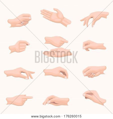 Realistic hand set with fingers positions on white. Vector poster in flat design of open and closed palms, clenched and straight fingers. Hands that indicate, point or are going to take something