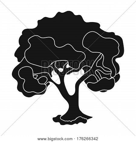 An old tree with a large green crown.Farm and gardening single icon in black style vector symbol stock web illustration.