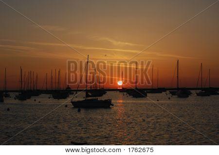 Sunrise Harbour