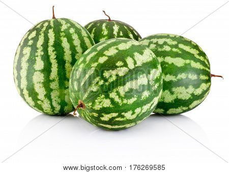 Four ripe watermelons berry isolated on white background