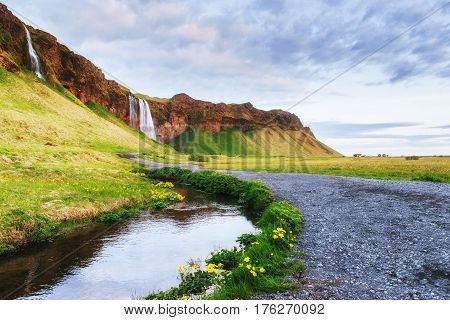 The Most Famoust Icelandic Waterfall