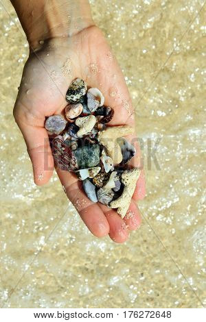 Travel to island Koh Larn Thailand. A hand with a different seashells and stones on the sea beach background in the sunny summer weather.