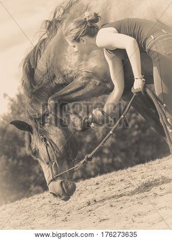 Jockey Woman Taking Care Of Horse