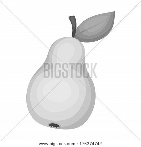 Pear with a leaf. Fruit of labor of a garden worker.Farm and gardening single icon in monochrome style vector symbol stock web illustration.