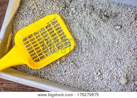 Yellow plastic scoop on the gray litter box filled by blue litter sand.