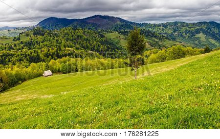 Agricultural Field In Mountains