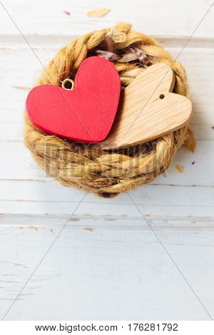 Two Hearts On Nest - Family And Valentine's Day Concept