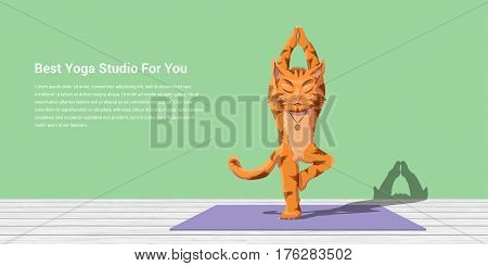 picture of a cat performing vrikshasana, yoga and meditation concept