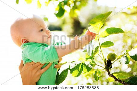 Nature discovery by baby child in green color clothes. Family walking outdoors at summer day.