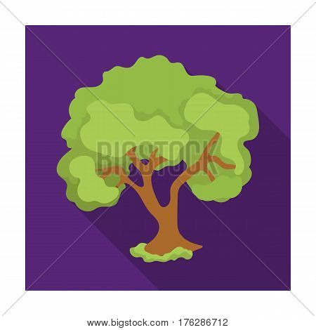 An old tree with a large green crown.Farm and gardening single icon in flat style vector symbol stock web illustration.