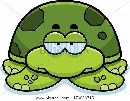Bored Little Sea Turtle
