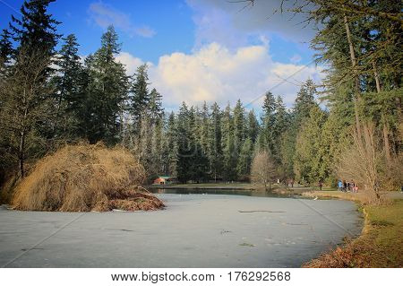 Park landscape in early spring with ice on pond water and fallen bushes and trees. Building and people walking around pond surrounded by large trees.