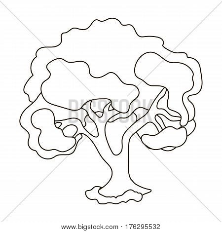 An old tree with a large green crown.Farm and gardening single icon in outline style vector symbol stock web illustration.
