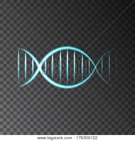 Blue neon shining DNA helix isolated on transparent background. Beauty science technology or medical vector concept.