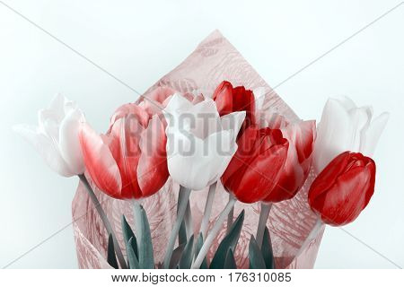 Bouquet of white and red tulips in a paper wrapper isolated on white background