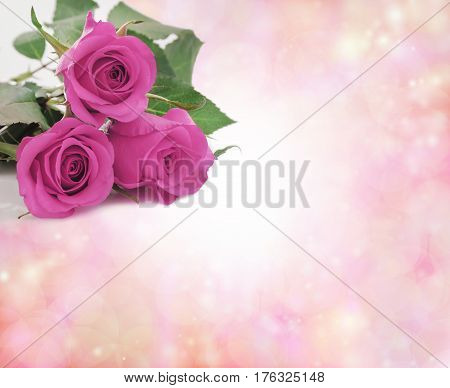Special Mothering Sunday Pink Roses - three perky pink rose heads positioned in top left corner of pink bokeh border background