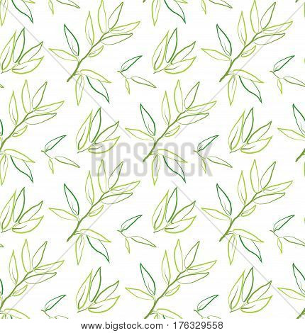 Eucalyptus longifolia woolly butt gum-tree leaves brunch sprig organic seamless pattern. Vector green linear line beautiful herbal laurel leaf plant nature illustration isolated on white background.