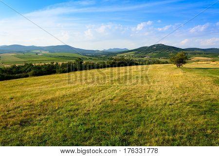 Greenery hills landscape in Hercegkut near SarospatakTokaj region Hungary