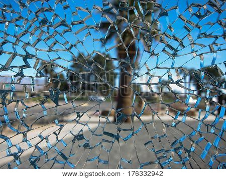 Intensely fractured safety glass after impact on window pane, obscuring view of palm outside.