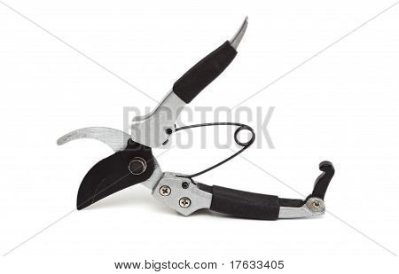 Secateurs.