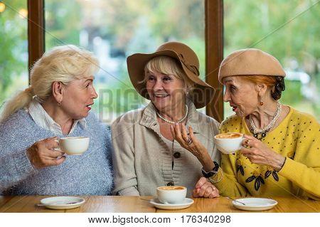 Three senior women drinking coffee. Ladies talking in cafe. Gossips and rumors.