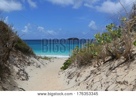 Saline beach, St. Barts, French West Indies
