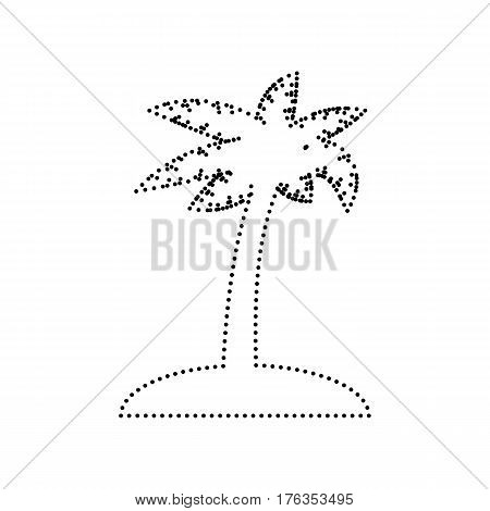 Coconut palm tree sign. Vector. Black dotted icon on white background. Isolated.