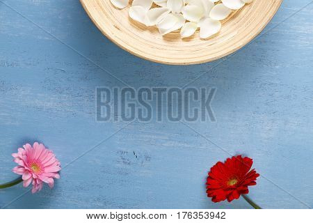 Petals of white roses and red gerbera flowers. Blue painted rustic background. Fresh natural flowers in bowl. Dirty grunge wooden board.