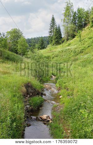 Narrow creek between hills in Carpathians. Ukraine