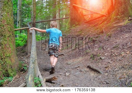Boy walks among trees in forest park