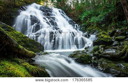 Mary Vine Falls streaming over mossy rocks in British Columbia.